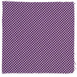Plum Gingham Pop swatch